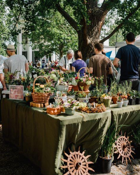 summer food market